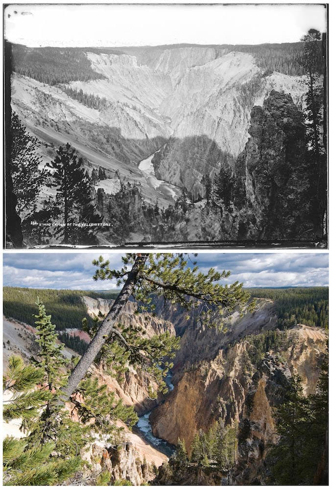 TOP July 28-30, 1871 No. 252. GRAND CAÑON. West side, one mile below the falls, looking down. (William Henry Jackson) BOTTOM A pine tree bisects the scene from where Jackson made this photograph looking down the Grand Canyon from near the Grand View overlook on the west side of the canyon, and a large chunk of the stone tower on the right side of Jackson's image has fractured off, exposing lighter, less weathered rock underneath. (Bradly J. Boner)