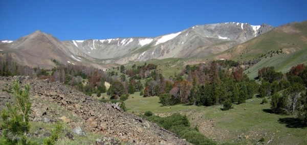 Francs peak is considered one of the highest ranked potential wilderness areas by the Shoshone National Forest.