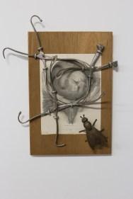medicine-in-art-mocak-krakow-wystawowe-zwierze-5
