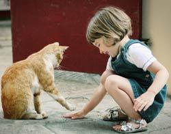 Chat et enfant qui jouent