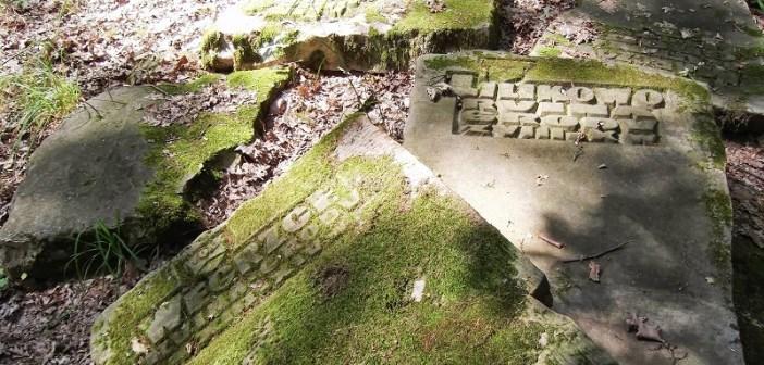 Zapomniany rezerwat Ślężan
