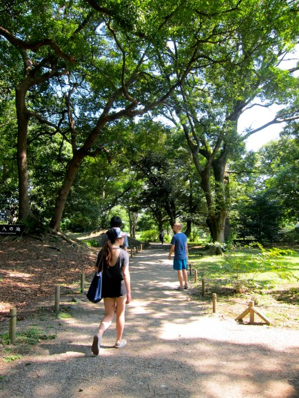 Walking down one of the park's many paths.