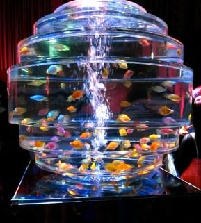 A Giyamanrium - a shining diamond aquarium