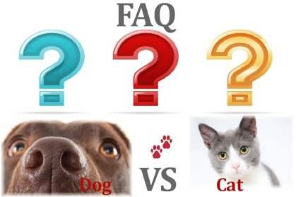 PET & ODOR TREATMENT FAQ