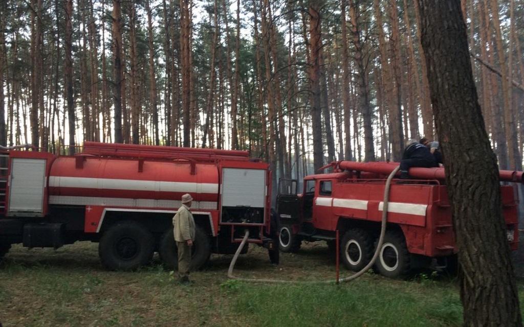Під Харковом погасили лісову пожежу