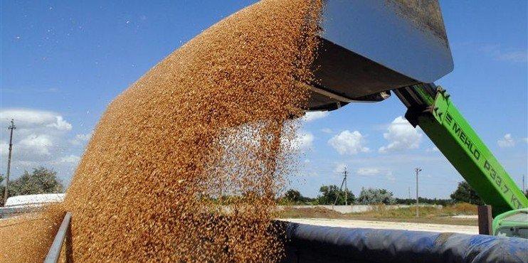 Депутати Харківської обласної ради обговорили питання зберігання зерна