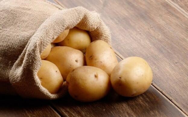 У господарствах Харківщини зібрано картоплі по 127,2 ц з 1 га