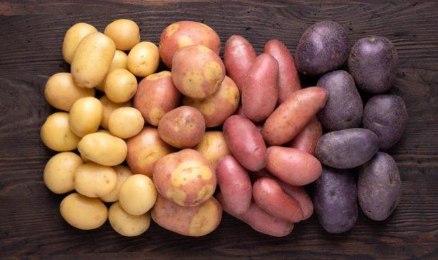 В Україні знизилися ціни на картоплю