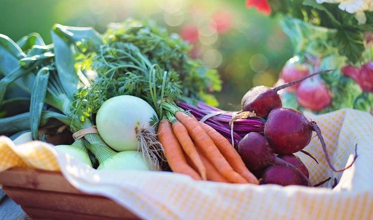 На прилавках українських ринків з'явилися ранні овочі