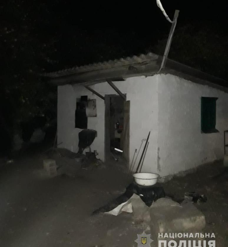 У власному будинку знайдені мертвими жінка та її син