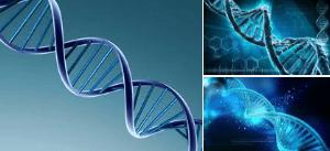 """Genetik und Vaterschaft – und """"was ist gut für meinen Sohn?"""""""