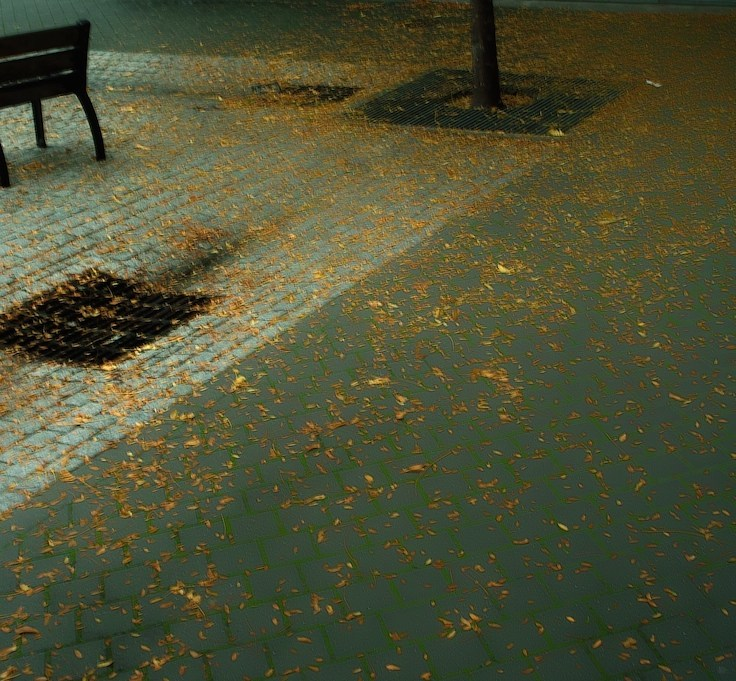 nobody under the rain