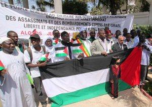 Manif-pour-Palestine4
