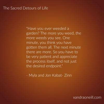Kabat-Zinn quote