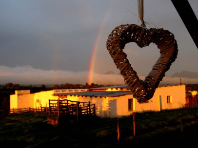 A rainbow appeared after a few days of showers... It was gorgeous!!!