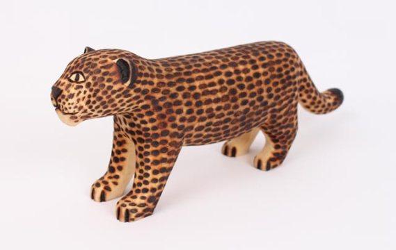 Guarani Jaguar, Indigenous Brazil