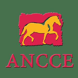 ANCCE
