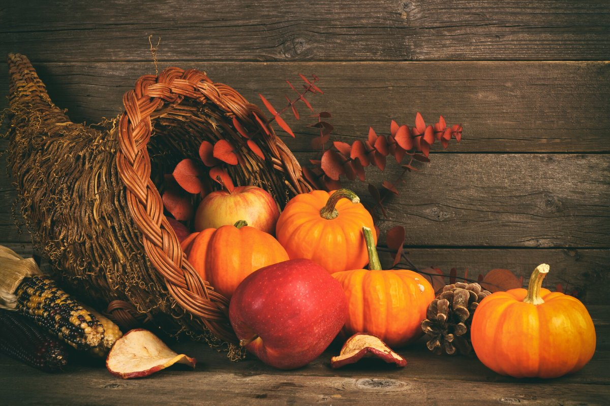 cornucopia of pumpkins