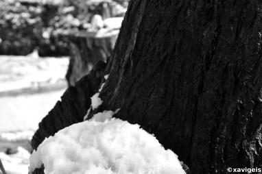 snowy nature#2_©xavigeis