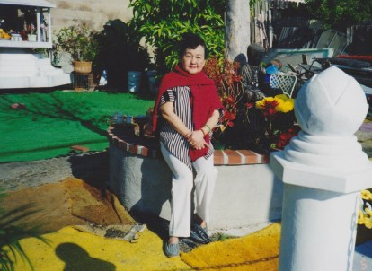 tuyethong-stupabackyard2 (9)