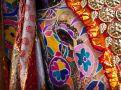 elephant-festival-jaipur-india_31779_990x742