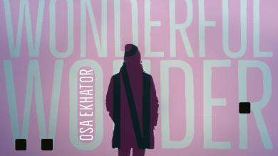 """Photo of Osa Ekhator Releases New Single """"Wonderful Wonder""""."""
