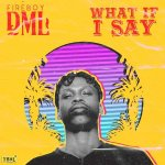 Fireboy DML What If I Say Mp3 Download