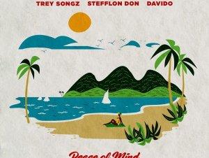 Peace Of Mind Remix Sean Kingston