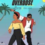 Dunnie Overdose Remix Mp3 Download