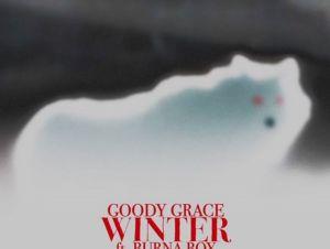 Goody Grace ft Burna Boy Winter