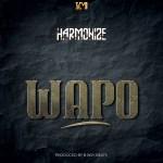 Harmonize Wapo