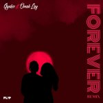 Gyakie Forever Remix artwork