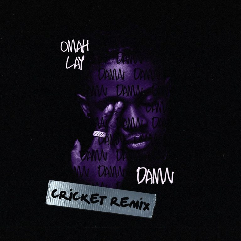 Damn (Cricket Remix) by Omah Lay Mp3 Download