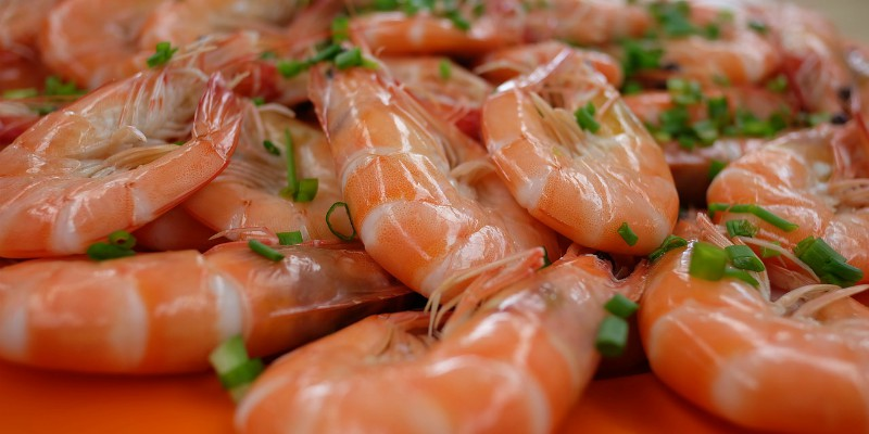 Seafood in Italy with Xclusivity
