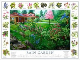 raingardenfree