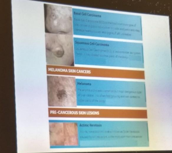 Problemas en la piel (ver a continuación explicación y fotos en castellano)