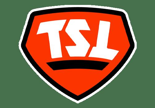 The Spring League Teams