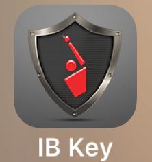 ibkey1