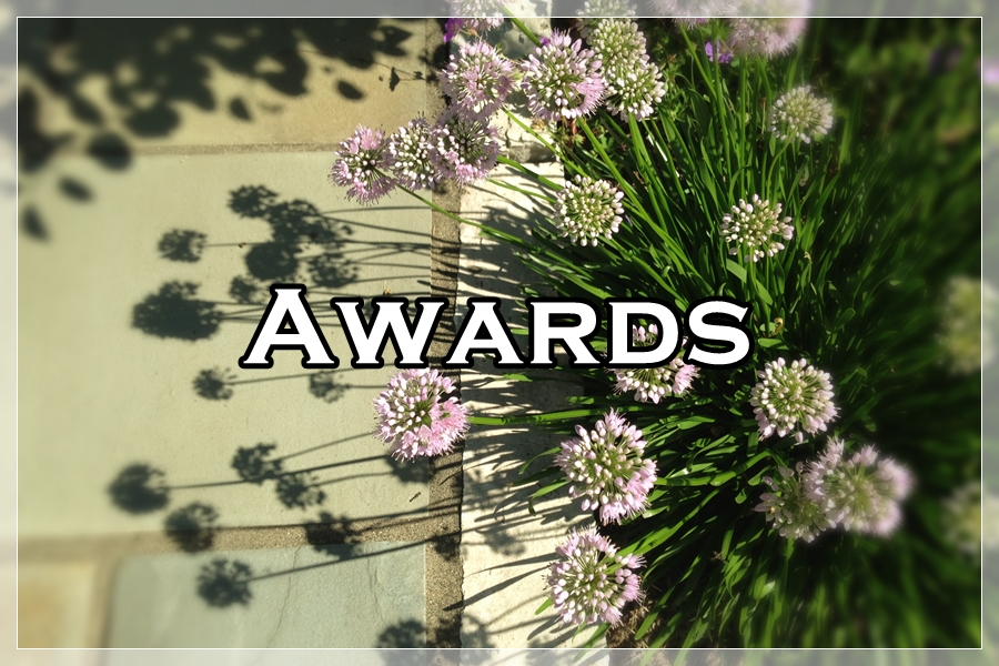 WNLA Awards