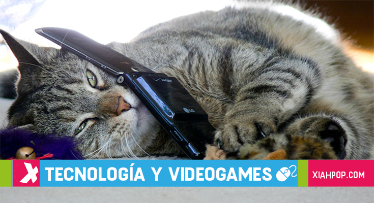 5 juegos asiáticos de gatitos