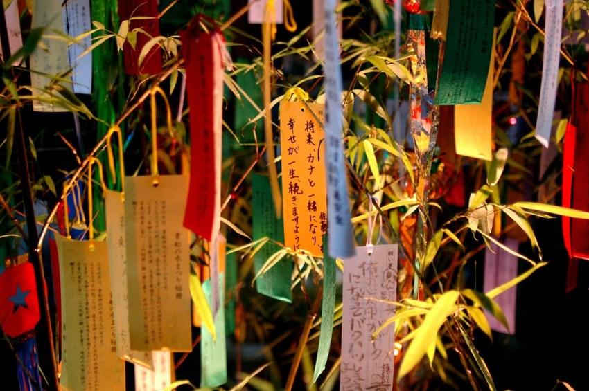 tanabata portada