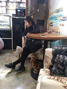Cafe owner, Dumpling and Little Leopard all riveted by the cuteness