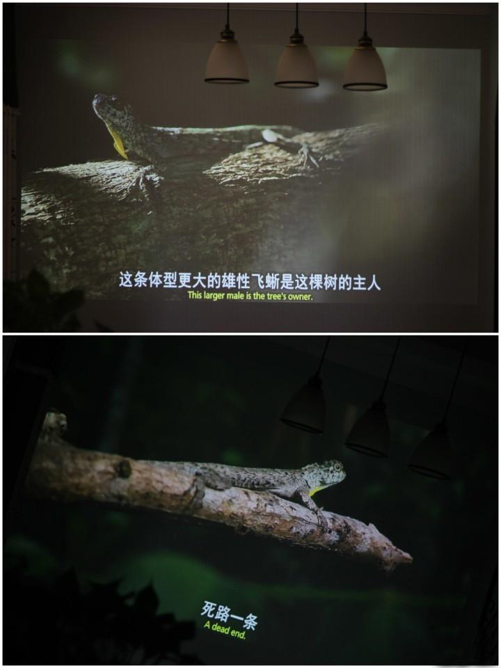 Mijia Projector Lite 2