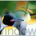 Installing Linux OS To Run Windows Application