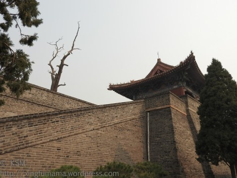 I think he diagonal of the steep ramp adds drama to the watch tower. I also like the irregular line of the dead tree.