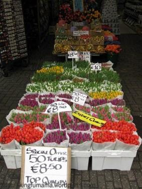 Flower market in Amsterdam.