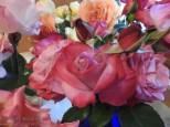 20170620-KSM-Roses-04