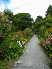 20130818-KSM-Garden_Path-05
