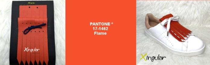 flame pantone 17-1462 xingular
