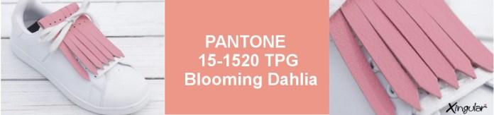 Colores para la Primavera 6-Blooming-Dahlia-SS-2018
